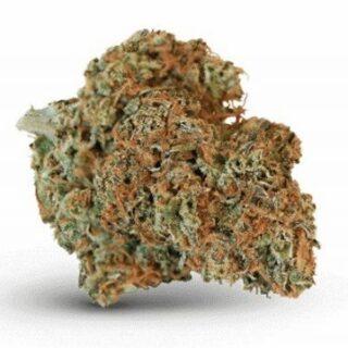 ACDC Weed Strain Online UK