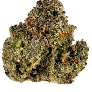 Gelato 45 Marijuana Strain UK