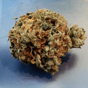 Trinity Marijuana Strain UK