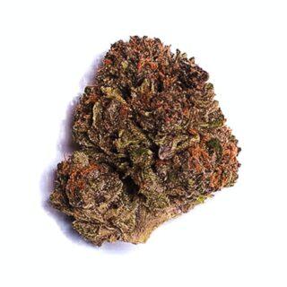 Buy Purple Hindu Kush Strain UK