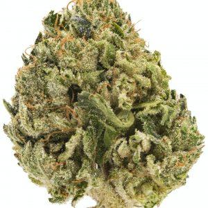 Presidential OG Marijuana Strain UK