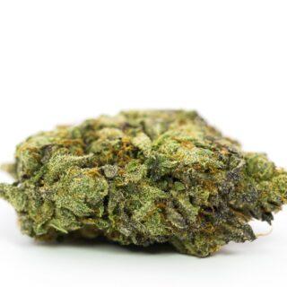 MK Ultra Marijuana strain UK