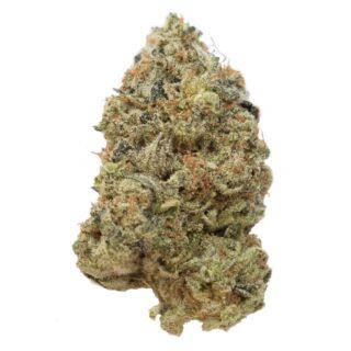 Buy G13 Marijuana Strain Online