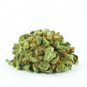 Yoda OG Marijuana Strain UK