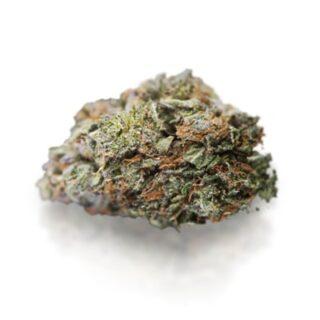 Critical Mass Marijuana Strain UK