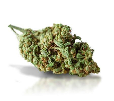 Shishkaberry Weed Strain Online UK