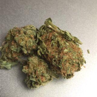 Platinum OG Marijuana Strain UK